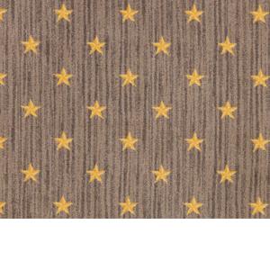 Joy Curtain Call Home Theater Carpet